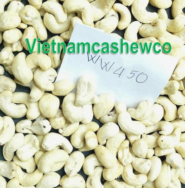 Cashewnut kernels WW450