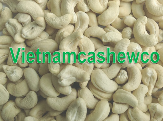 Top quality Cashew nuts WW320